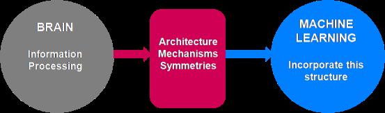 Neurociencias y machine learning
